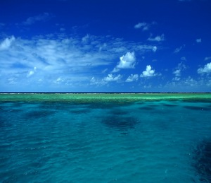great_barrier_reef 1